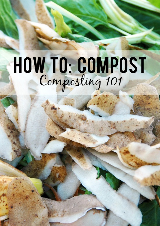 Composting Basics - Composting is great for your garden, the environment, and even your wallet (all that money saved on fertilizer!), so if you want to get started with your own compost, here are some composting basics tips for how to compost. Gardening tips